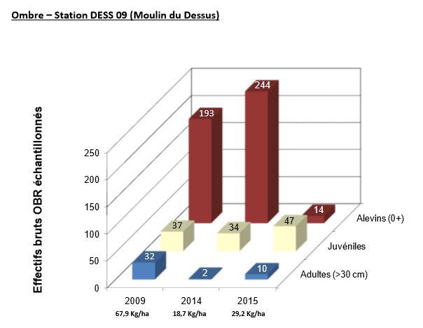 Ombre – Station DESS 09