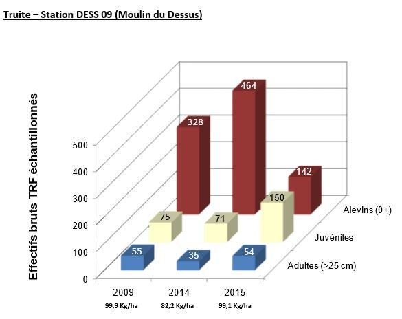 Truite – Station DESS 09