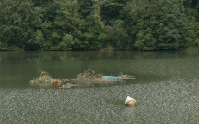 Barque perdue en amont du barrage de Grosbois