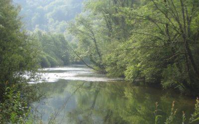 Enfin, le niveau des eaux devient propice à la pêche…